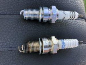 81CC50E7-5250-4277-B60A-A73A411C6EA3.jpeg